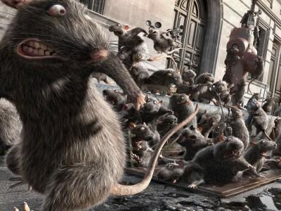 colonia-di-topi